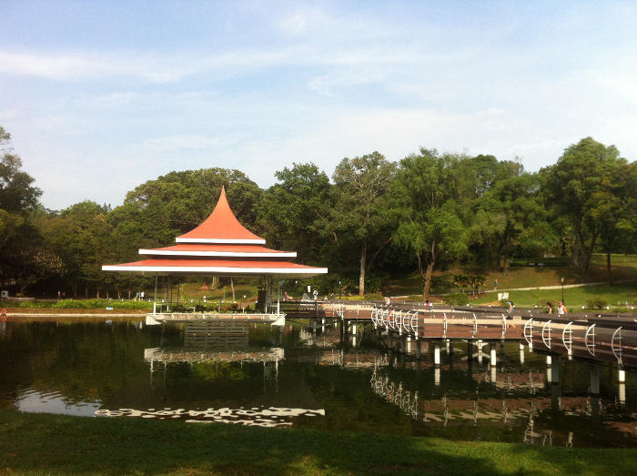 MacRitchie Reservoir Scenic Places in Singapore