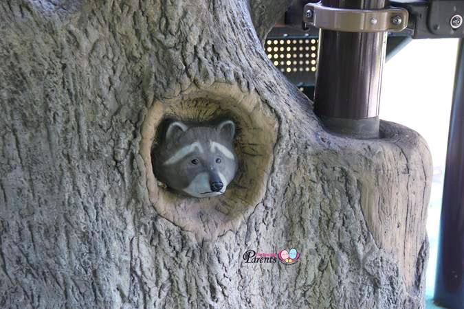 racoon playground rumah tinggi eco park