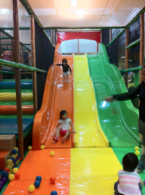 The Polliwogs Indoor Playgroud Slide