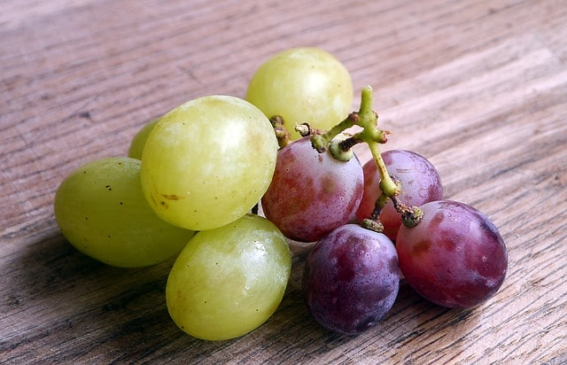 serving of grapes for toddlers