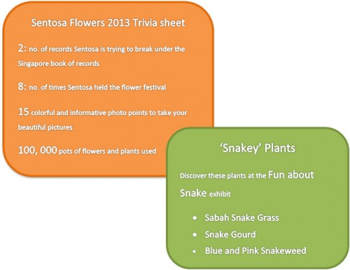 Sentosa Flowers 2013 fun facts