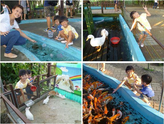 activities at pasir ris kids kampong