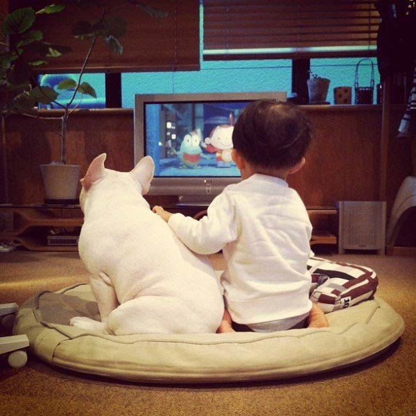 friendship between dog and toddler