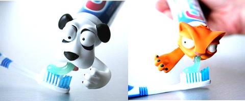 adorable toothpaste casing