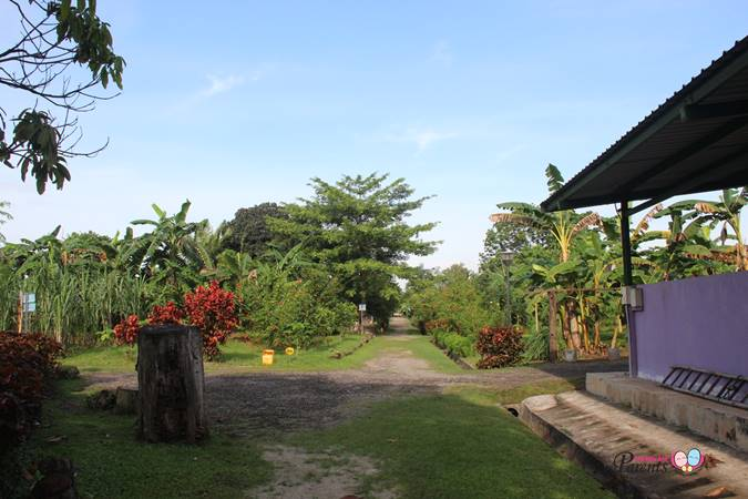Top 5 Scenic Places Singapore - Kranji Countryside