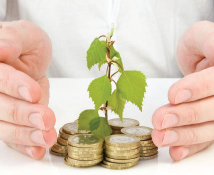 Investment tips to grow your money