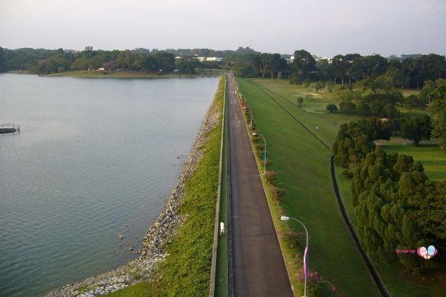 upper seletar reservoir view from tower