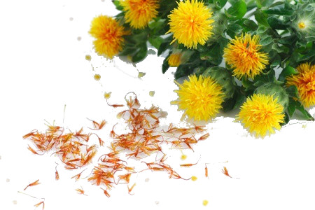 Safflower Herbs that can treat Hair Problems