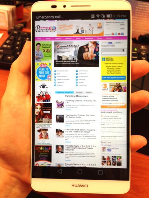 Huawei Mate 7 Grip