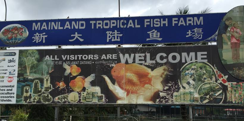 mainland tropical fish farm entrance