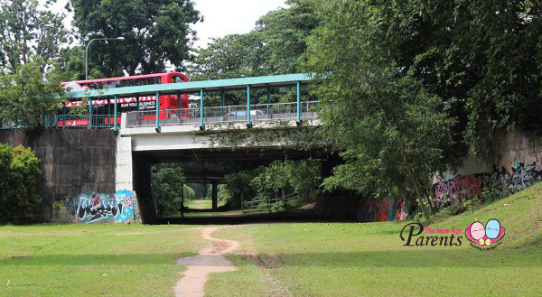 green rail corridor under buona vista bridge