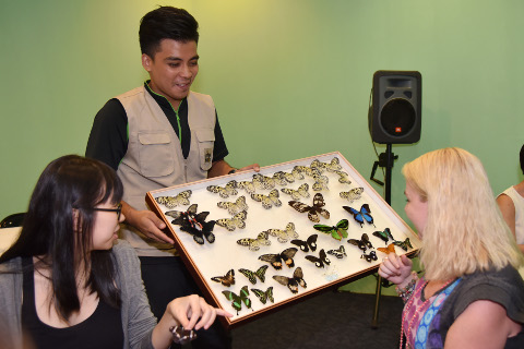 Butterfly Up-Close staff facilitiating media activity at media preview of Butterflies-Upclose