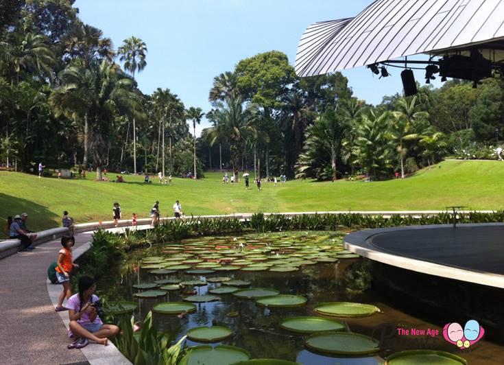 Symphony Lake Botanic Gardens