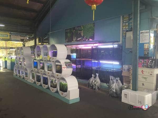 qian hu aquarium nano tank area