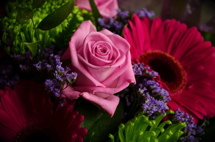 10 Kinds Of Flowers You Can Give Your Wife On Her Birthday - Birth flower