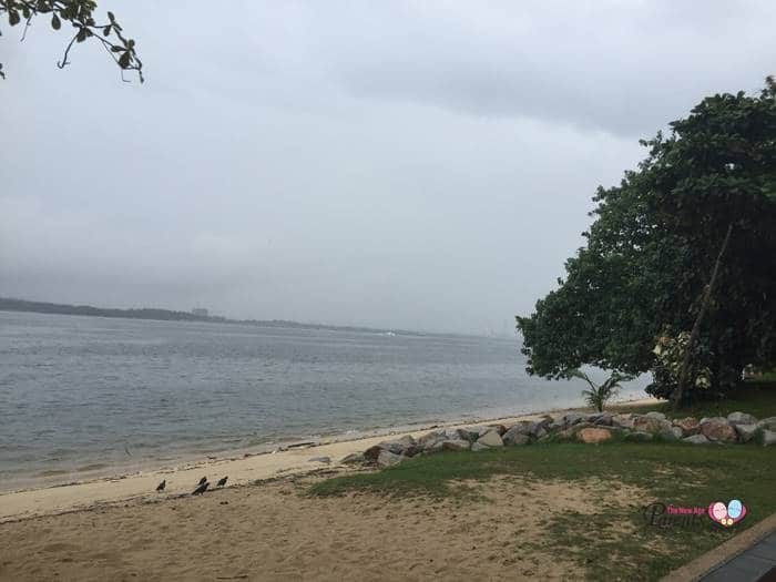 beach during high tide sembawang park