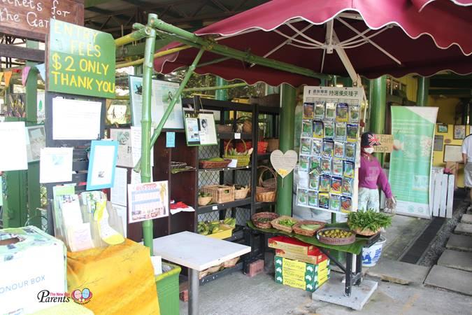 bollywood veggies entrance fee