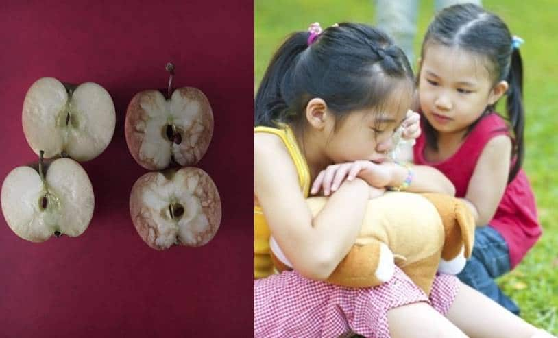 how apples helped children understand bullying