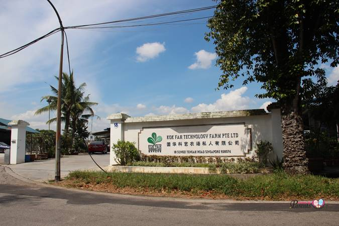 kok fah technology farm entrance