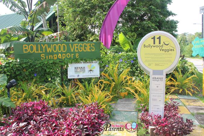 kranji heritage trail site 11 bollywood veggies
