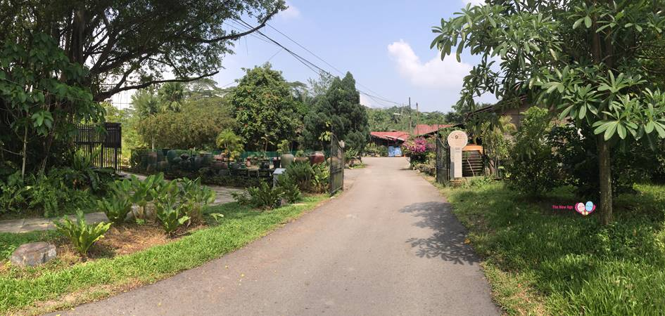 road leading to thow kwang pottery jungle