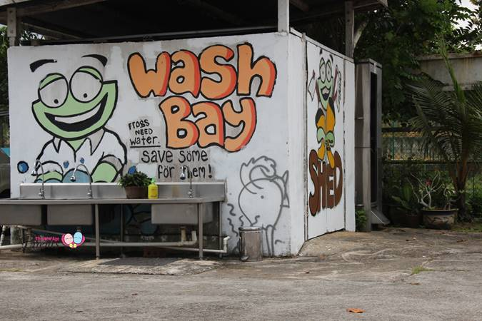 washing area in jurong frog farm