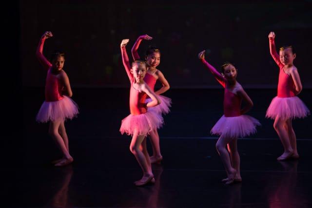 crestar concert flamingos