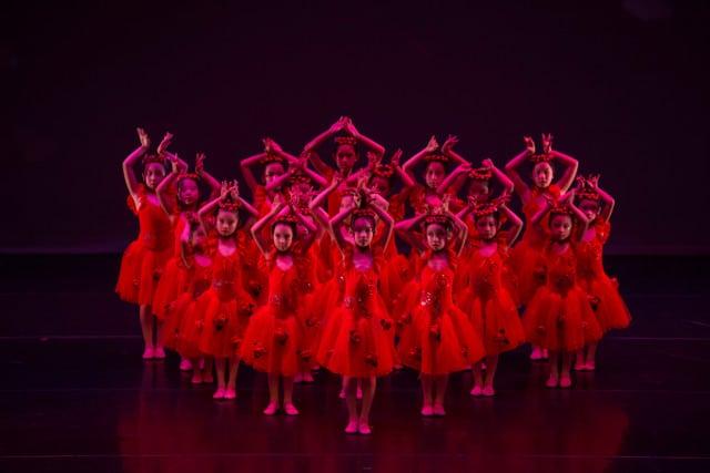 crestar concert red roses