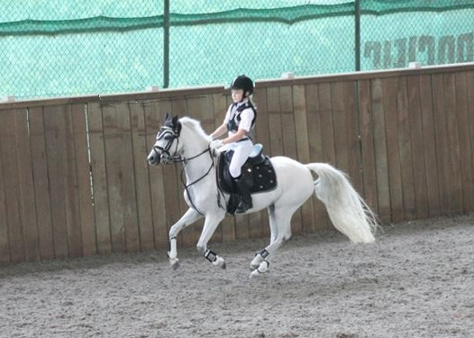 bukit-timah-saddle-club-pony-riding-for-kids