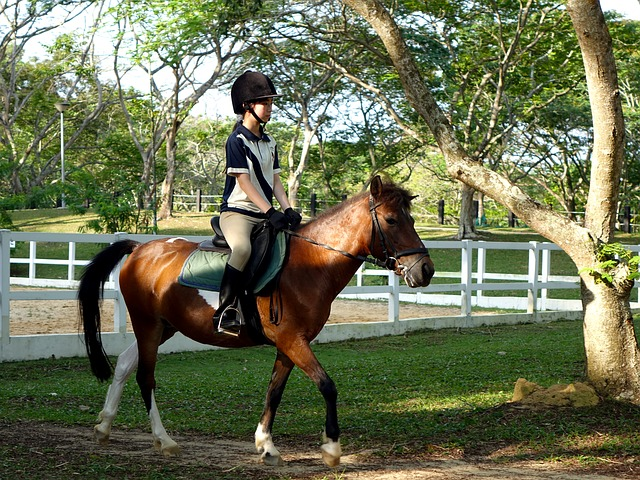 pony-riding-for-kids-singapore