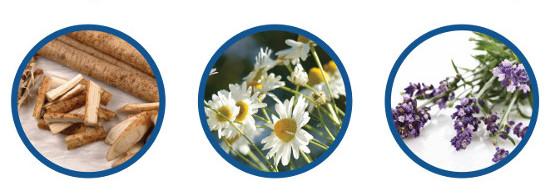 TK TrichoKare - European Herbs