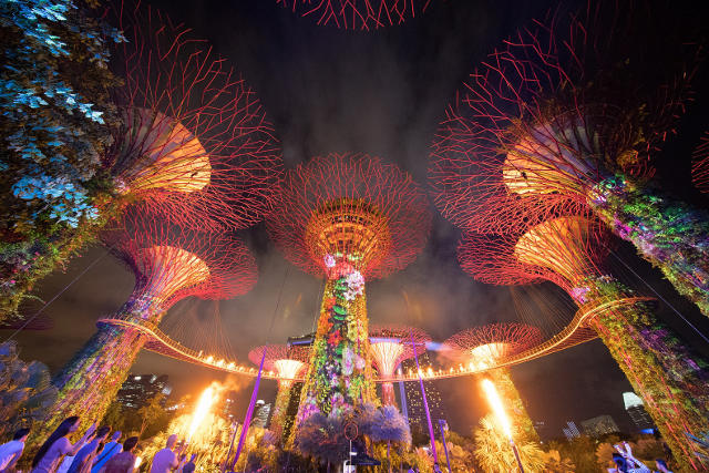 Burst of flames at Supertree Grove during the Gardens Extravaganza Special