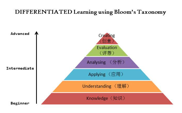 Chinese enrichment Yang Language School Bloom taxonomy