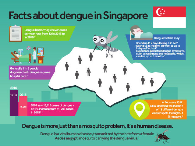 How To Protect Your Family From Dengue