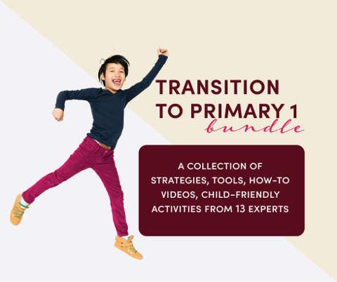 transition to p1 bundle