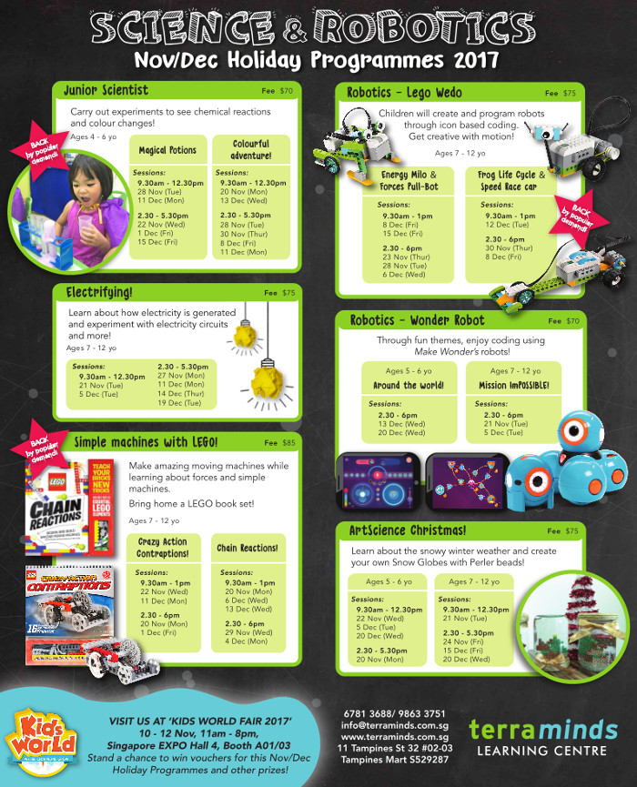 TerraMinds Robotics and Science Year End Holiday Programme