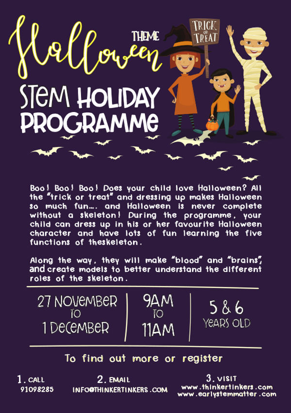 Thinker Tinkers STEM holiday programme