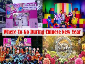 Where To Go During Chinese New Year In Singapore 2018