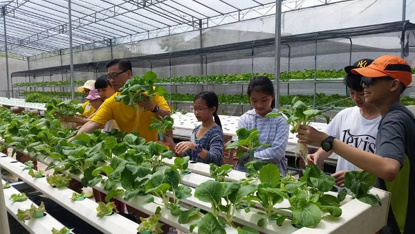 Grace Mission Hydroponic Farm