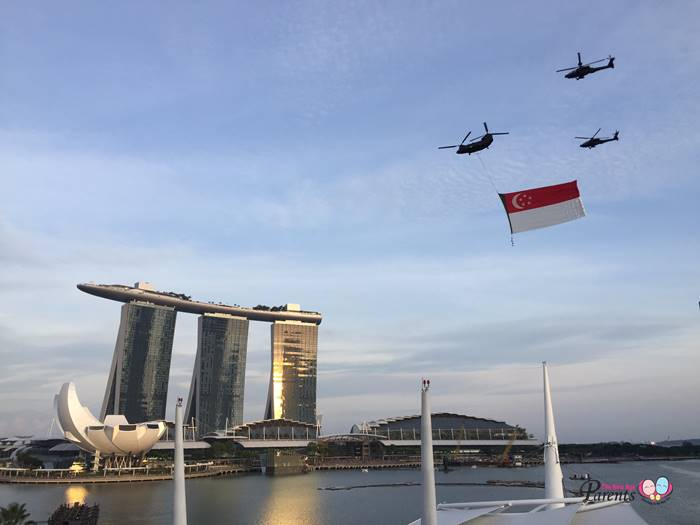 national day state flag flypast