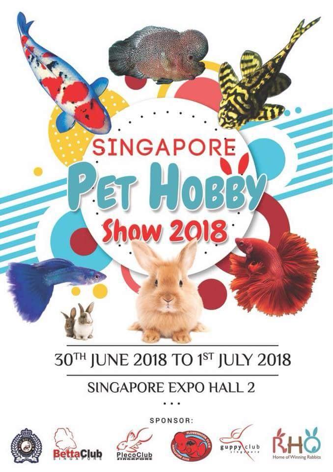 singapore pet hobby show 2018