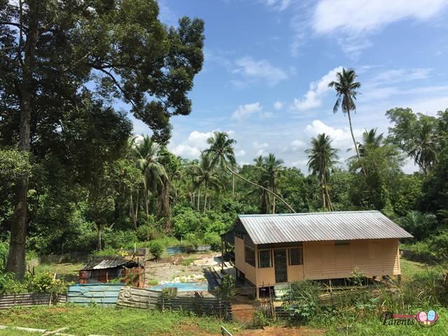 kampung kampong in pulau ubin