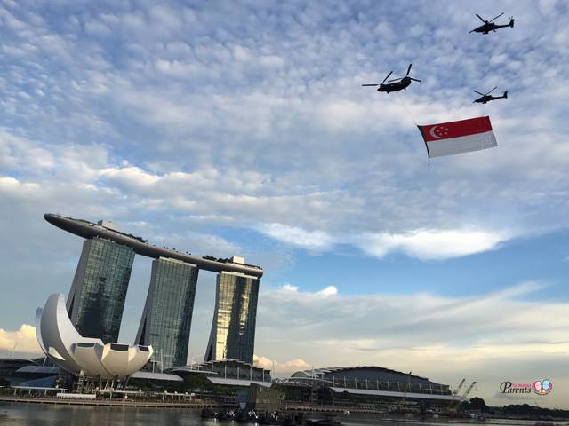 national day flag flypast