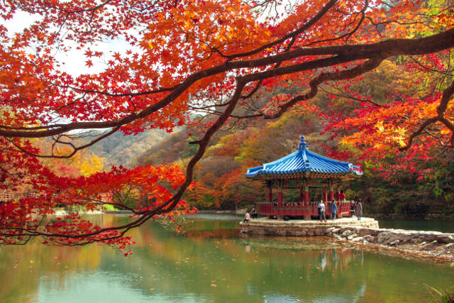 Naejangsan Mountain, South Korea