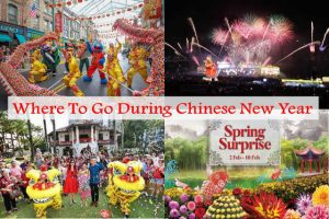 Where To Go During Chinese New Year In Singapore 2019