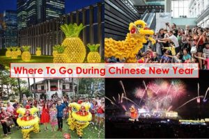 Where To Go During Chinese New Year In Singapore 2020