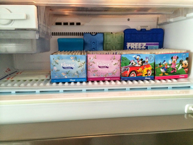 ways to store breastmilk -In tissue boxes
