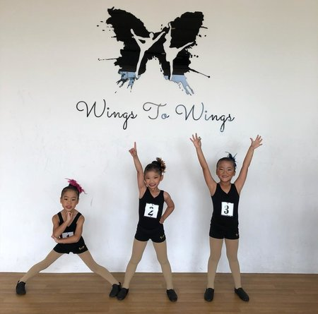 Wings To Wings Ballet for Kids