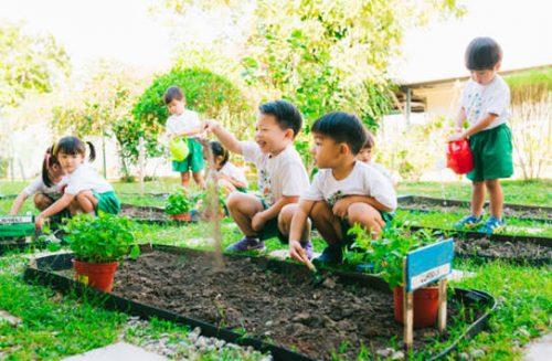 Tips To Raising An Eco-Conscious Child