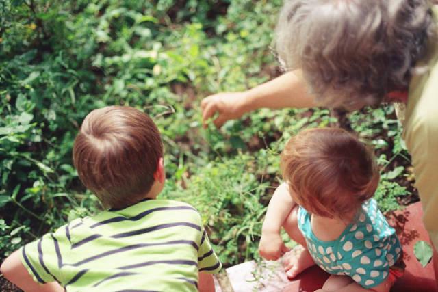 grandparents vs childcare
